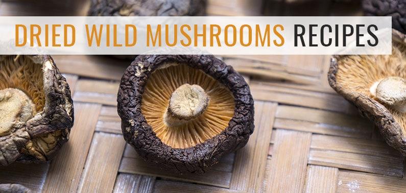 Dried Wild Mushrooms Recipes